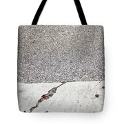 Cracked Tote Bag by Margie Hurwich