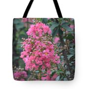 Crepe Myrtle Blossoms  Tote Bag