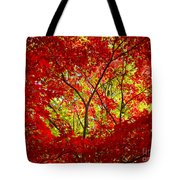 Crimson Window Tote Bag
