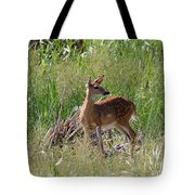 Curious Whitetail Tote Bag