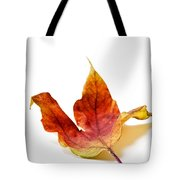 Curled Autumn Leaf Isolated On White Tote Bag
