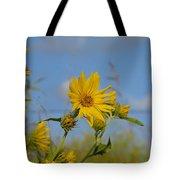Cutleaf Daisy Tote Bag