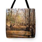 Cypress Waterway Tote Bag