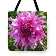 Dahlia Named Annette C Tote Bag
