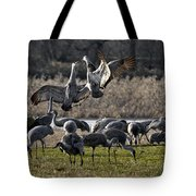 Dance Of The Cranes Tote Bag