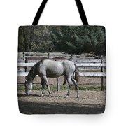 Dapple Grey Tote Bag