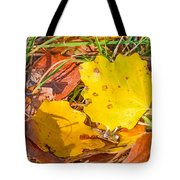 Dead Poplar Leaves Tote Bag