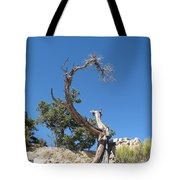 Dead Tree At Grand Canyon Tote Bag