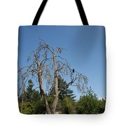 Dead Tree With Crow Tote Bag