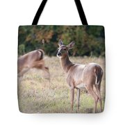 Deer At Paynes Prairie Tote Bag