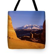 Delicate Arch, Arches National Park Tote Bag