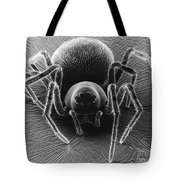 Dictynid Spider Tote Bag