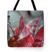 Dogwood  Autumn Tote Bag