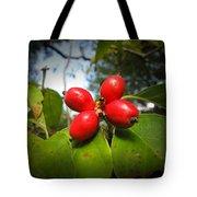 Dogwood Berries Tote Bag