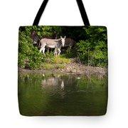 Donkeys Tote Bag