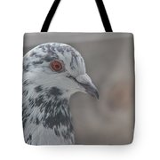 Dove Pigeon Tote Bag