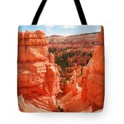 Down Into Bryce Tote Bag