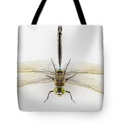 Dragonfly Isolated Tote Bag