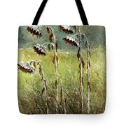 Dried Up Sunflower Patch Tote Bag