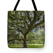 Dripping With Spanish Moss Tote Bag