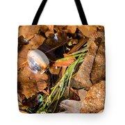 Dry Acorn And Oak Leaves Tote Bag