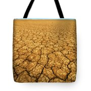 Dry Cracked Earth Tote Bag