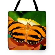 Dryadula Butterfly Tote Bag