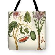 Dye Plants Tote Bag