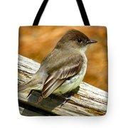 Eastern Kingbird Tote Bag