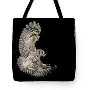 Eastern Screech Owl Tote Bag