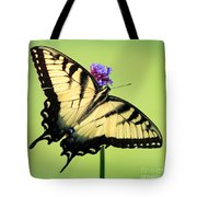 Eastern Tiger Swallowtail Butterfly Square Tote Bag