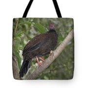 Edwards Pheasant Tote Bag