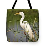 Egret In The Cattails Tote Bag