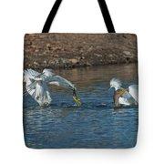 Egrets Robbing A Cormorant Tote Bag