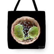 Eosinophil Cell Tote Bag