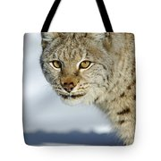 Eurasian Lynx In Snow Tote Bag