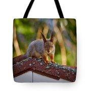 Eurasian Red Squirrel Tote Bag