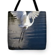 Everglades Tote Bag