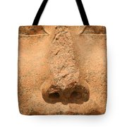 Face Of Hathor Tote Bag