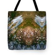 Faces In Water II Tote Bag