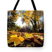 Fall Autumn Park. Falling Leaves Tote Bag