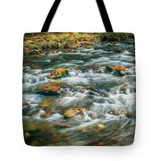 Fall Colors Stream Great Smoky Mountains Painted  Tote Bag