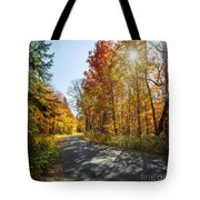 Fall Forest Road Tote Bag