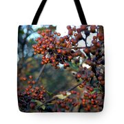 Fall Fruit Tote Bag