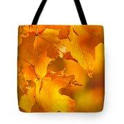 Fall Maple Leaves Tote Bag by Elena Elisseeva