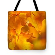 Fall Maple Leaves Tote Bag