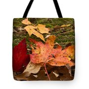 Fall Moss Carpet Tote Bag