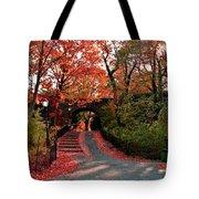 Fall Path Tote Bag