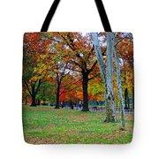 Fall Walk Tote Bag
