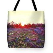Farley Sunset Tote Bag